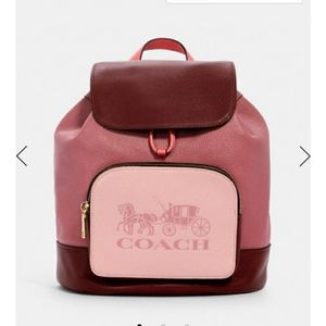 Coach backpack- Jes horse and carriage